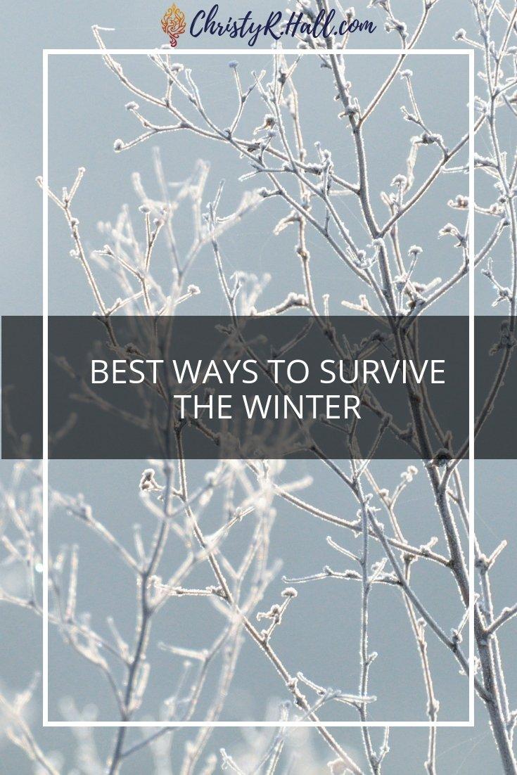 Best Ways To Survive the Winter